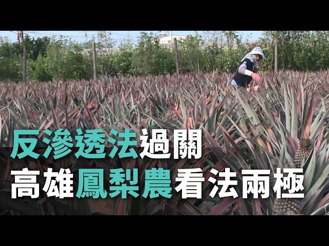 中国大陸からの政治的な影響の阻止を目指す『反浸透法』が可決・成立、高雄市のパイナップル生産者に異なる見方