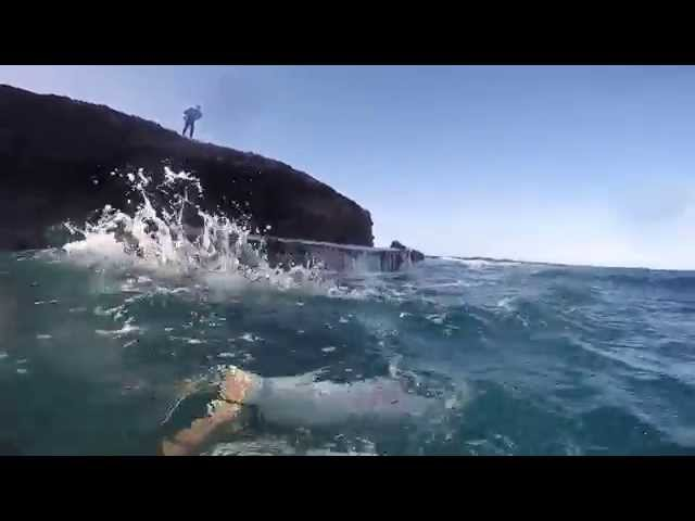 ARUBA EXTREME LIONFISH HUNTING OFF A CLIFF- BOCA MAHOS