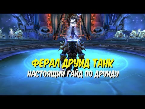 ГАЙД ПО ФЕРАЛ ДРУИДУ ТАНКУ в World of Warcraft Classic