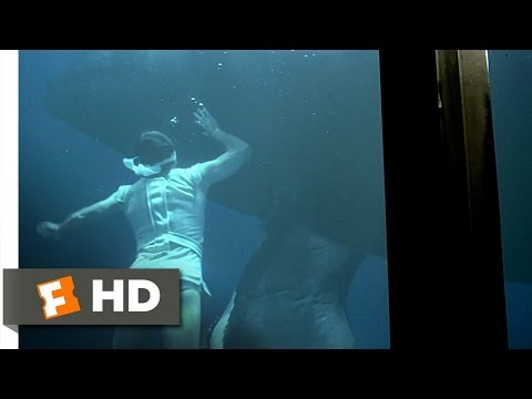 Star Trek 4: The Voyage Home (4/10) Movie CLIP - Swimming with the Whales (1986) HD Mp3