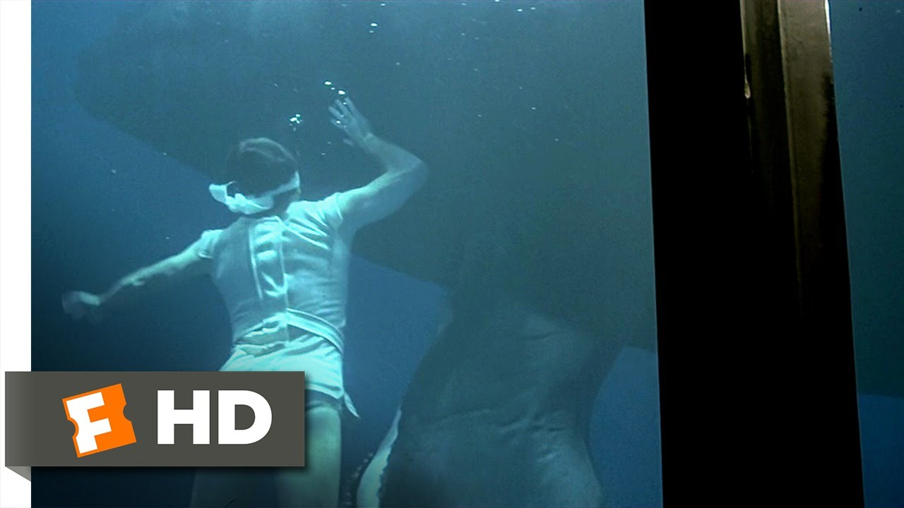 Star Trek 4 The Voyage Home 4 10 Movie Clip Swimming With The
