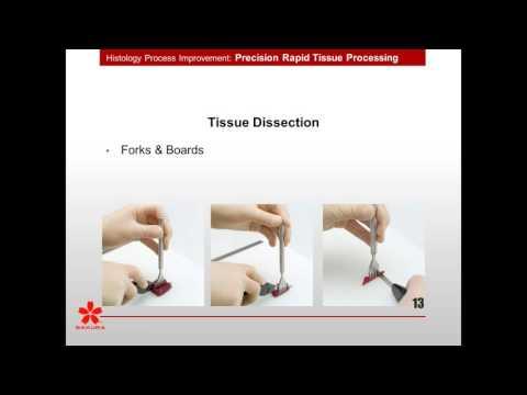 Precision Rapid Tissue Processing