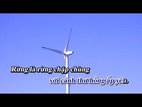 Đời Là Vạn Ngày Sầu -tone nam HaNa & HQT