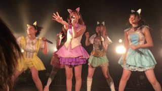 わーすた定期ライブ 「わーすたランド わ-5」1部 渋谷WWW X #わーすた #...