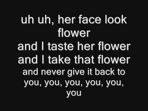 Damn Damn - Lil Wayne ft T-pain (Lyrics)