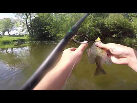 Fanny Pack Fishing - 6/2/17
