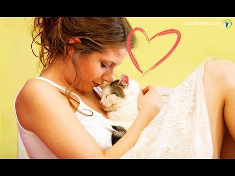 8 beneficios del ronroneo de los gatos para tu salud