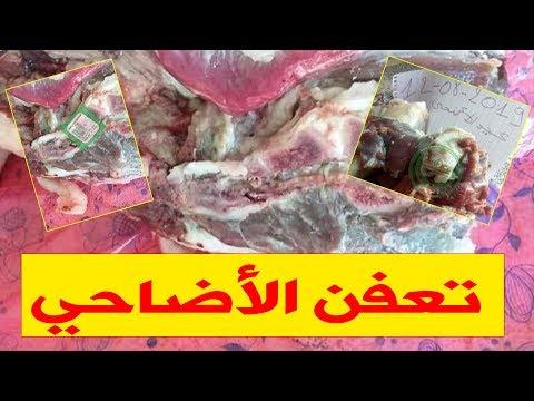 عيد الأضحى 2019.. الجزائريون يواجهون حالات تعفن الأضاحي من جديد.. والسبب !!