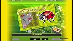 Darling of Fortune Echtgeld - Darling of Fortune online mit Echtgeld spielen
