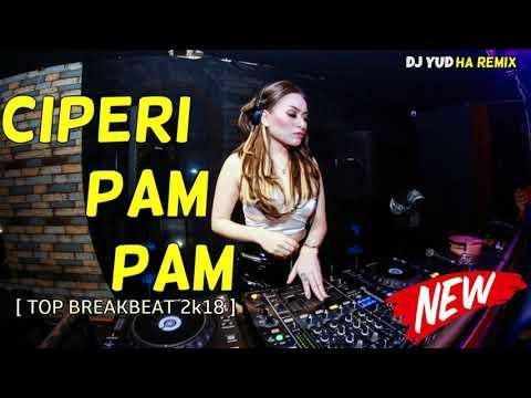 DJ CIPERI PAM PAM REMIX TERBARU 2018 (( MANTAP JIWA )) = FULL