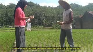 Download KPP C_VINA YUNITA RIA_PESTISIDA ALAMI