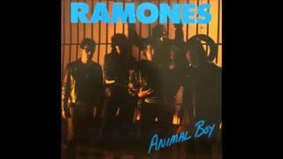 Ramones - Mental Hell (Tradução)