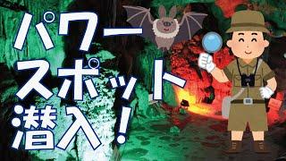 パワースポットな鍾乳洞の中へ、坂本龍馬が突入してみた!~不二洞、群...