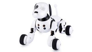 👍 Рободог или собака-робот DIMEI 9007A с пультом. Robodog DIMEI 9007A with control panel