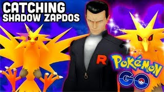 Catching Shadow Zapdos & Giovanni battle in Pokemon GO | Looming in the Shadows December