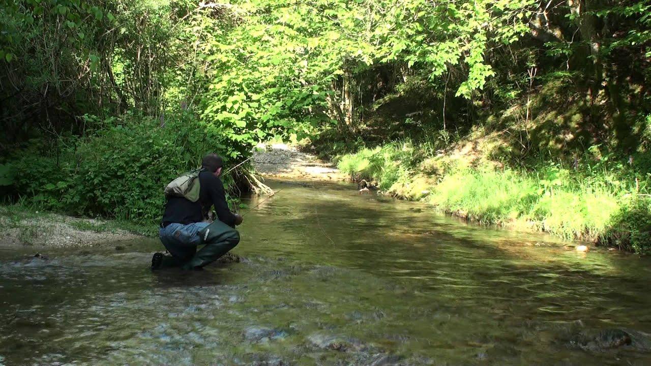 Guardare il video che pesca nel nord nellinverno
