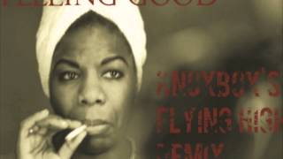 NINA SIMONE- FEELING GOOD (KNOXBOX