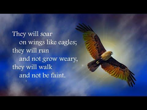Soar on wings like eagles (Isaiah 40:28-31)