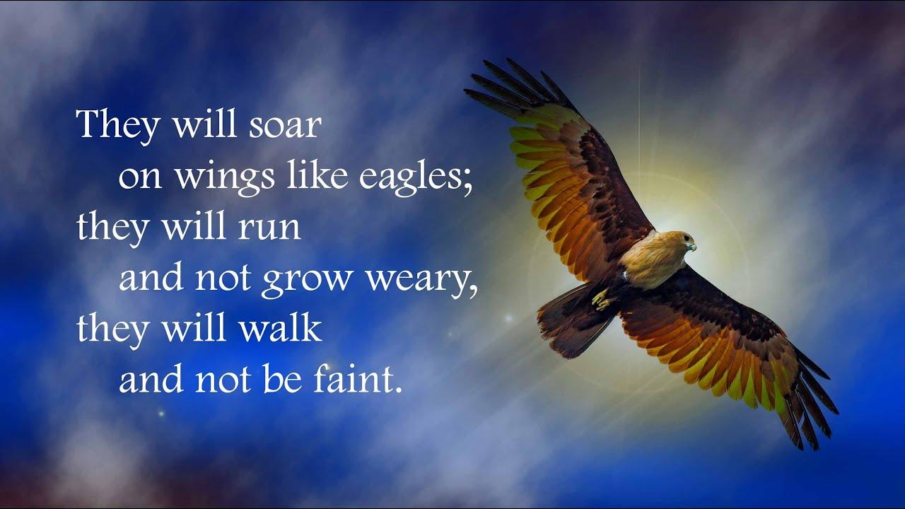 Soar On Wings Like Eagles Isaiah 4028 31 Youtube