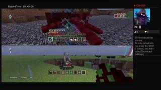 Minecraft End Challenge