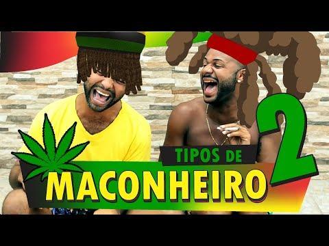 TIPOS DE MACONHEIROS 2