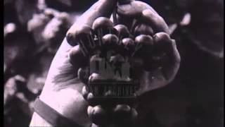 Farming in Canada, 1920's - Film 44732