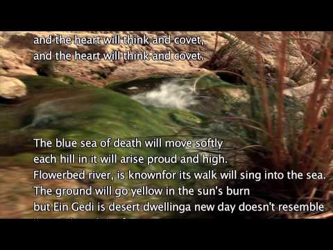 Ein gedi with lyrics oasis kibbutz in israel israeli folk music