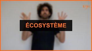Environnement - Ecosysteme