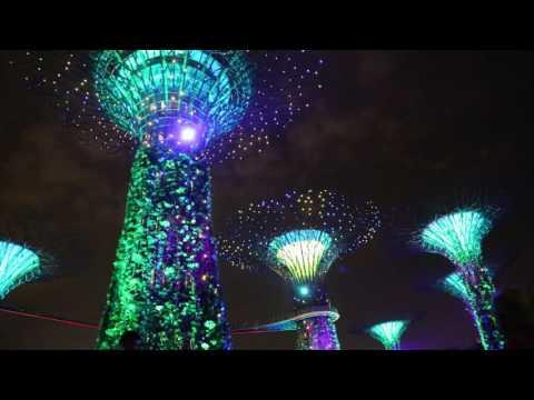Singapore musical super tree light show