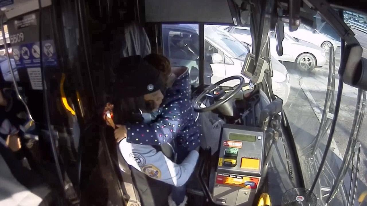 summary of the bus drivers daughter Summary please enable javascript to play this video how to become a bus driver bus drivers must have a commercial driver's license (cdl).