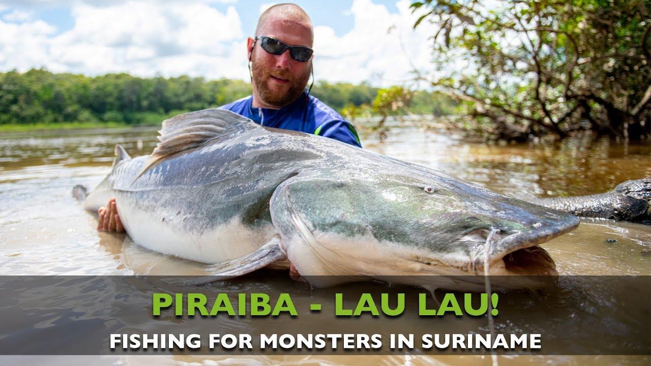 Fishing For Monster Piraiba Lau Lau In Suriname Youtube
