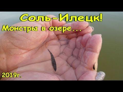 Соль-Илецк! МОНСТР в озере, это очень опасно! НЕЧИСТОТЫ! Как плавать в озере... август 2019!