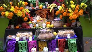 Altar de muertos STAUS