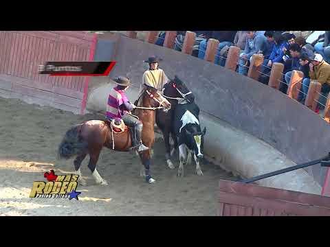 Programa Más Rodeo Club San Ramón