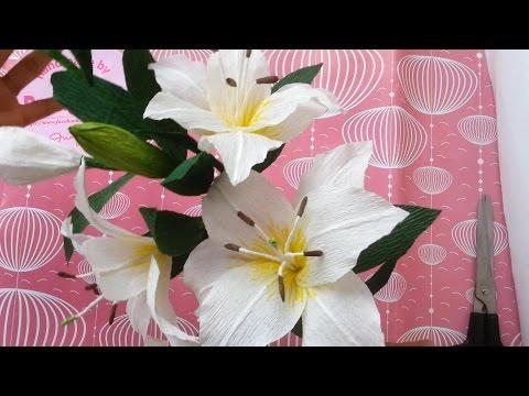 cách làm hoa ly giấy nhún - handmade Dzung Mac
