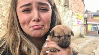 Encontré un perrito abandonado y Cumpleaños de mi papá - Maqui015 ♥