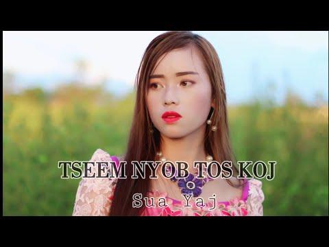 TSEEM NYOB TOS KOJ (BY:Sua Yaj) thumbnail