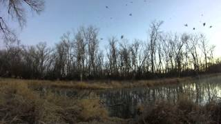 Erkenbrack Farms Duck Hunting