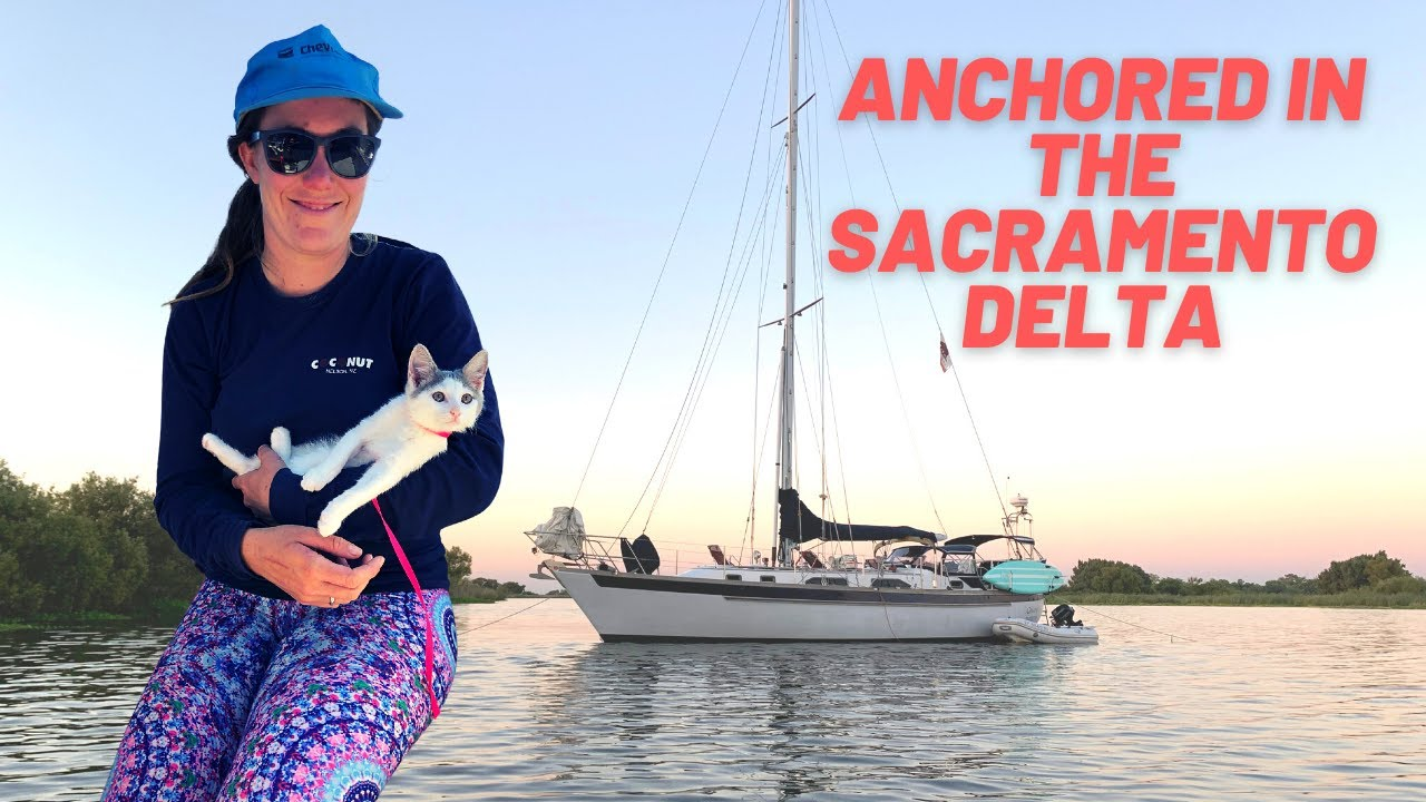 EP 26: Sacramento Delta Sailing with our New Boat Cat | Two the Horizon
