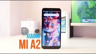 Xiaomi Mi A2 Review: Should You Buy This?