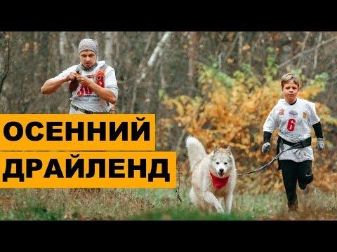 "Осенний драйленд ""Богородские шуршалки - 2019"""
