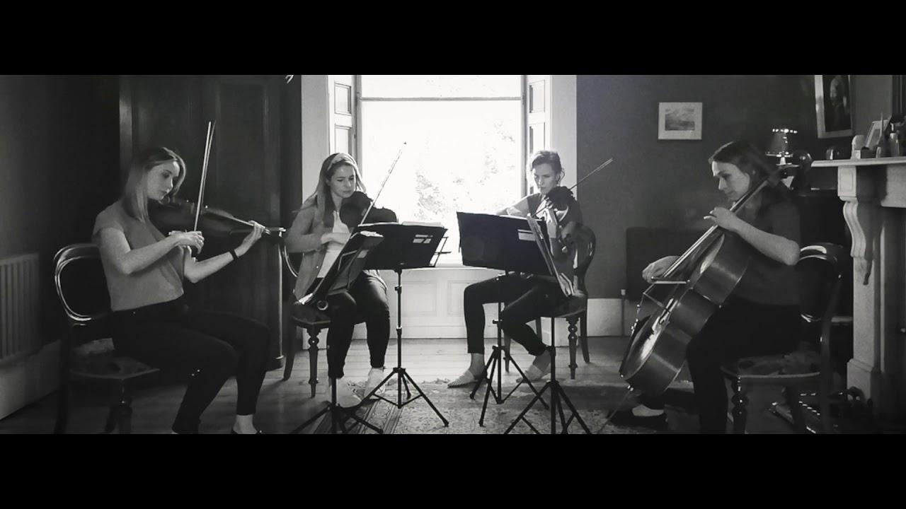 Leinster String Quartet Video 3