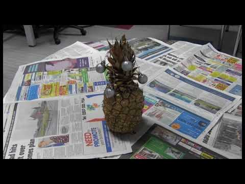 How To Create A Pineapple Christmas Tree