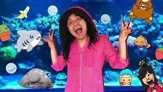 Yeya visita a Pepenaker y sus acuarios - Big Fisher 4