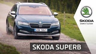 Новая Skoda Superb 2019   Обновленный лифтбек и универсал
