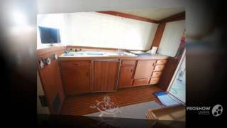 Bertram yacht 33 fbc seconda serie power boat, flybridge yacht year - 1985