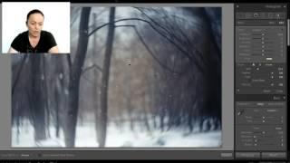 Видео-урок по постобработке в Ligtroom серого леса и пшеничного поля