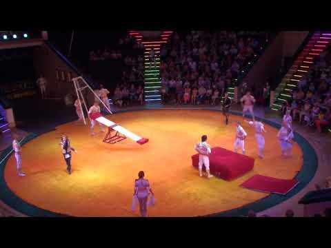 481 troupe acrobats