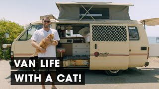 Guy Travels with Rescue Cat in an Old 1985 Toyota Hiace Campervan (Van Tour)