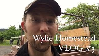 I Could Have KILLED Someone!!! [Wylie Homestead VLOG #3]